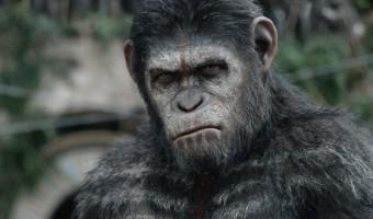 """Gesponsertes Video: Kriegszustand im neuen """"Planet der Affen: Revolution""""-Trailer"""