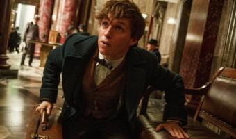 """Lumos Maxima! Der erste Trailer zum """"Harry Potter""""-Spin off """"Phantastische Tierwesen"""""""