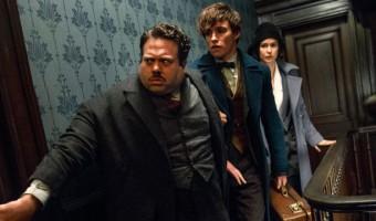 """Phantastische Tierwesen"": Neues Filmbild aus dem ""Harry Potter""-Spin Off zeigt Dan Fogler"