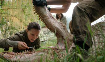 """Eine monströse Begegnung: Neuer Trailer zur Buch-Verfilmung """"Auslöschung"""" mit Natalie Portman"""