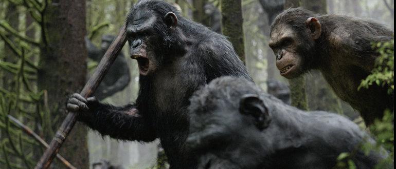 """Caesar will keinen Krieg: Finaler deutscher Trailer zu """"Planet der Affen: Revolution"""""""