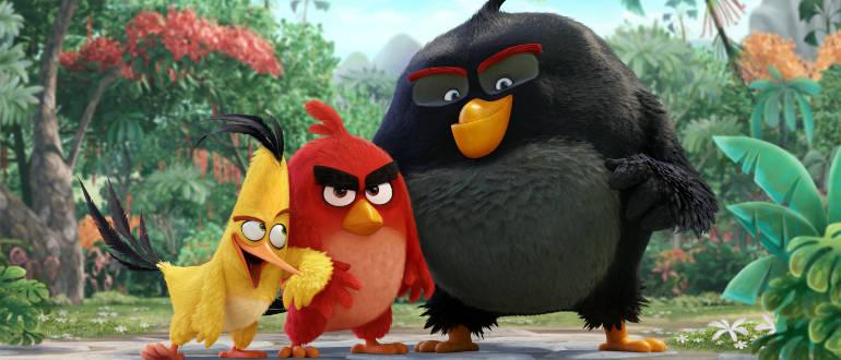 """Offizielles Bild aus der kommenden """"Angry Birds""""-Verfilmung: Schauspieler bekannt"""