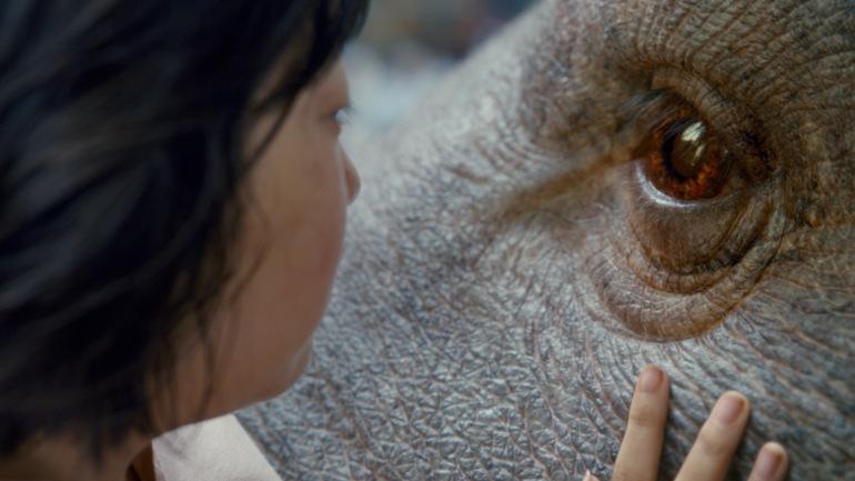 """Netflix Film """"Okja"""" erhält deutschen Teaser Trailer: Das außergewöhnliche Abenteuer zweier Freunde"""