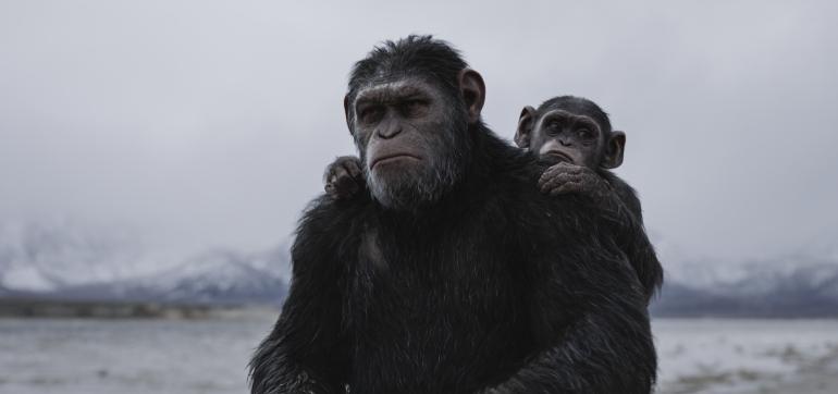 """Kinostarts 3. August 2017: """"Planet der Affen: Survival"""" und Michael Fassbender in """"Das Gesetz der Familie"""""""