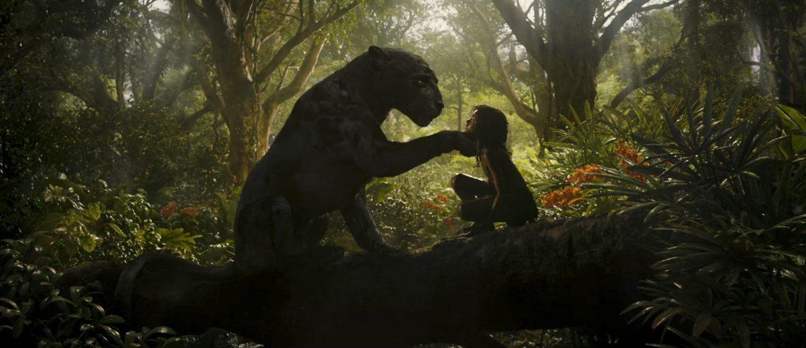 """Netflix-Neuerscheinungen im Dezember 2018: Neuer """"Mogli""""-Realfilm und Sandra Bullock in """"Bird Box"""""""
