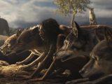 Mogli: Legende des Dschungels, Netflix