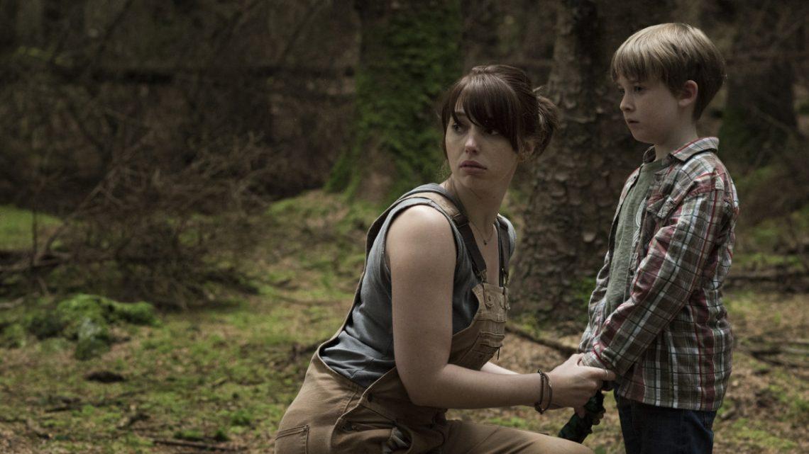 """""""The Hole in the Ground"""": Erster deutscher Trailer zum neuen Horrorfilm"""